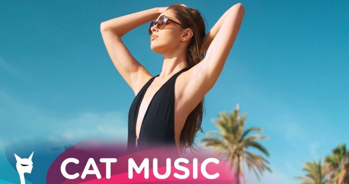 Asculta live DJ Sava & MD DJ - Rigoletta, single nou